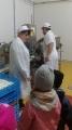 Przedszkolaki w Bychawie_3